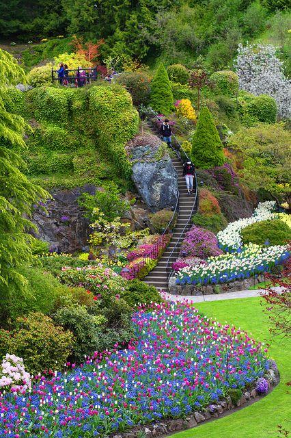 Tulip Garden | Flickr - Photo Sharing!