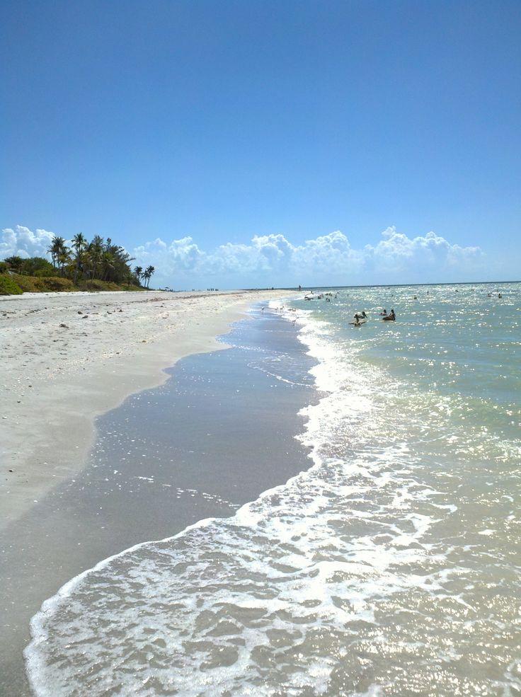 700 Best Florida Usa Images On Pinterest Florida Florida Beaches And Fort Myers Beach Florida