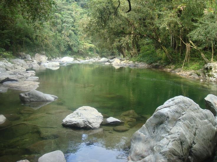 On y arrive à la Cité Perdue en traversant, après une marche de 3 jours, des forêts abondantes de rivières et de flore exotique, des ponts suspendus, des montagnes et des cascades. #Colombie #ciudadperdida