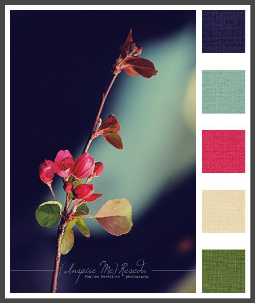 A perfect Summer or Fall Wedding color palette.  Replace the light blue with an aqua and the green with a lime green.
