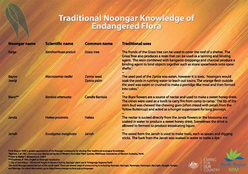Traditional Noongar Knowledge of Flora