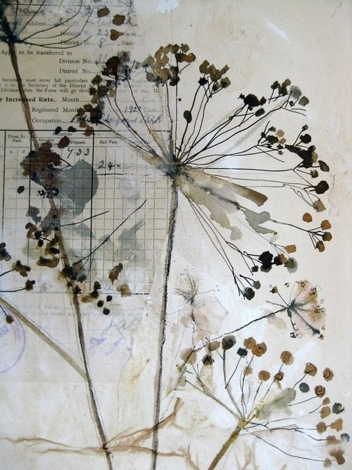 Love dandelions in paintings (not the garden of course) byMandy Pattullo