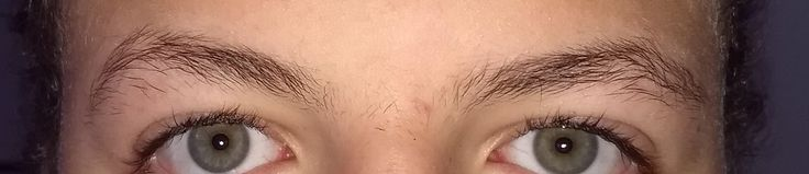 [Skin Concerns] How would I go about fixing my eyebrows?
