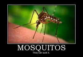 gratuitement sonnerie mosquito