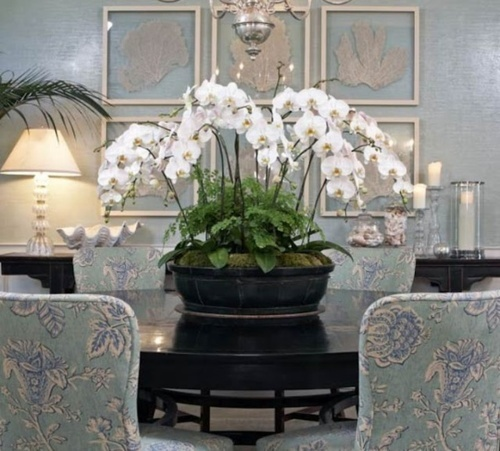 If you don't know what flowers to do, a lot of orchids in a Chinese footbath is always an elegant choice with a lot of wow factor.