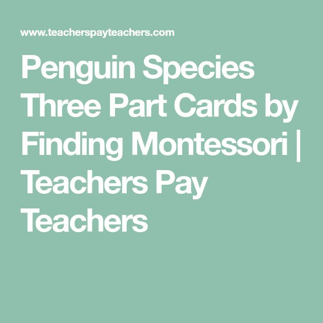 Penguin Species Three Part Cards by Finding Montessori | Teachers Pay Teachers