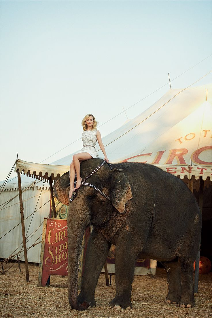 elephant and reese witherspoon - mixed feelings about this and the circus connection