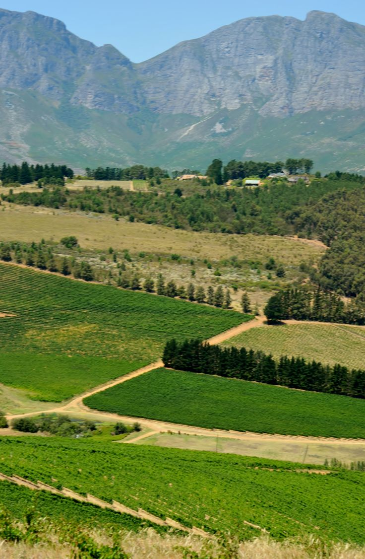 Wedderwill Estate and the Hottentots-Holland mountain range behind it - Somerset West - Cape Town. This residential estate has probably one of the best scenic locations in the Western Province and remains largely an undiscovered gem! #Wedderwill #SomersetWest