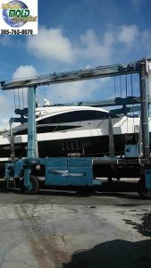 State of The Art Marine Mold Inspection, Mold Testing, Mold Removal for Boats, Yachts, Mega Yachts, Charter Boats, Passenger Ships, and Other Maritime Vessels.