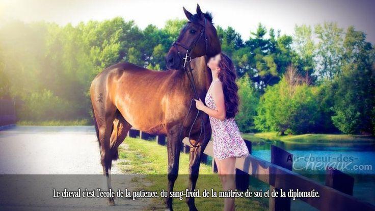 Le cheval c'est l'école de la patience, du sang-froid, de la maîtrise de soi et de la diplomatie.