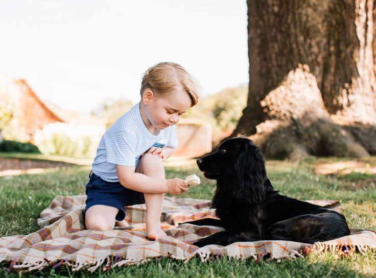 Prince George Looks Like a Little Grownup in New Photos for His 3rd Birthday | E! News