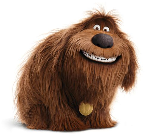 Duke is a dog from The Secret Life of Pets.