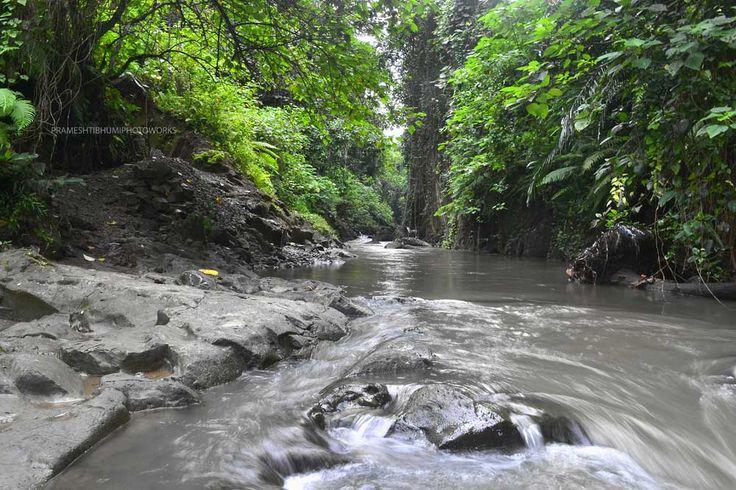 TEGENUNGAN RIVER, Gianyar - Bali - Indonesia
