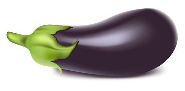 Eggplant vegetable Vector Download