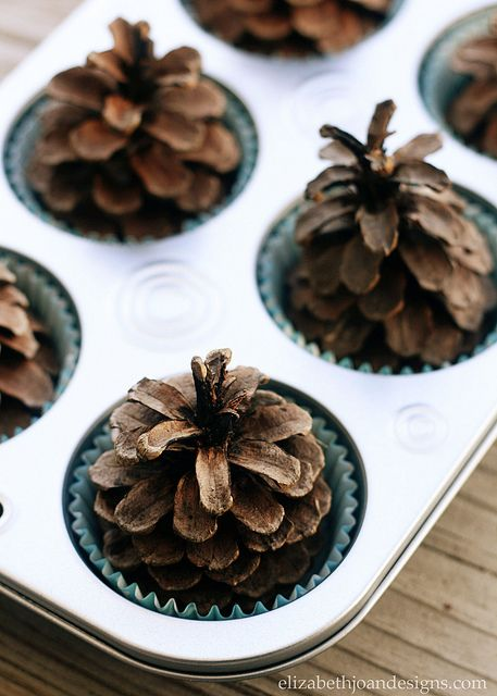 Pinecone Fire Starters 5