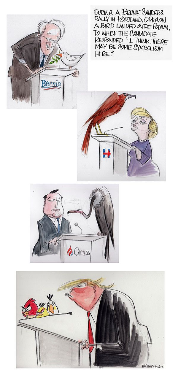 """Bernie Sanders said of the bird that landed on his podium, """"I think there may be some symbolism here."""""""