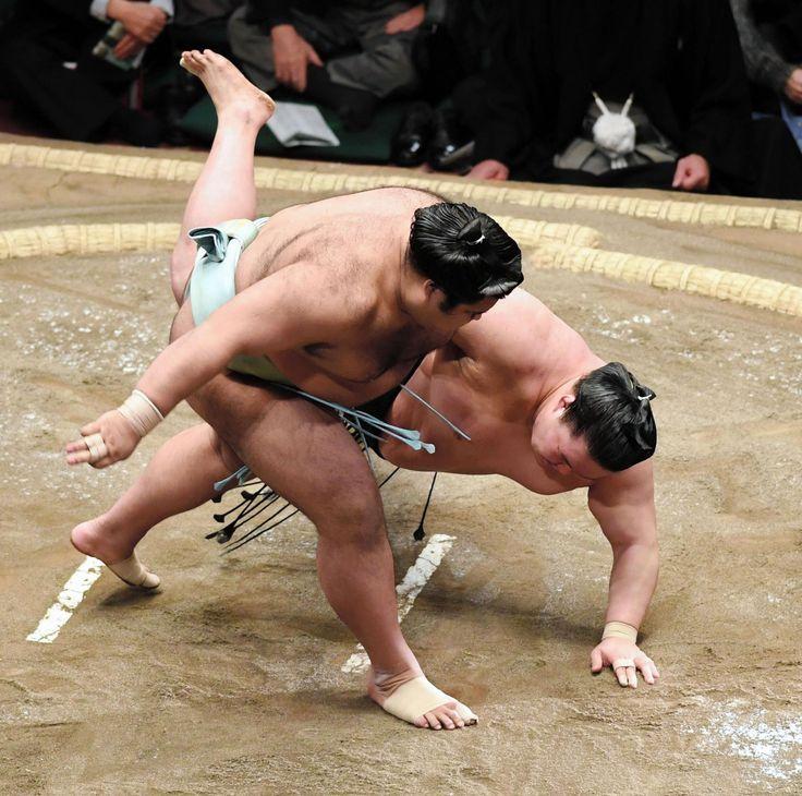 高安が連日の大関戦白星 豪栄道を豪快に転がす デイリースポーツ #相撲