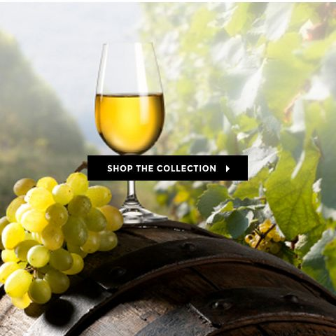 CHARDONNAY LOVERS! A selection of some of our hand picked Chardonnay for you to try! #wine #winecentral #newzealand
