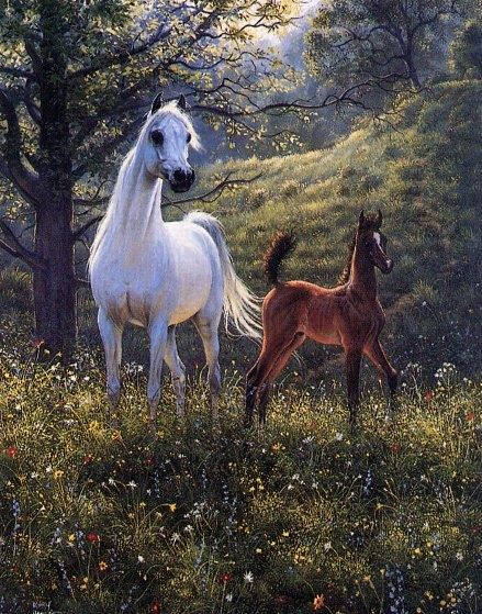 Mary Haggard Paintings | EndLiss scans - Wildlife Art] Mary Haggard - Gloriettasayonaara with ...