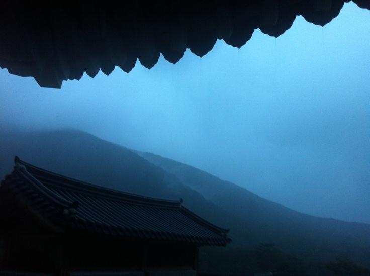 해남 대흥사의 아침.