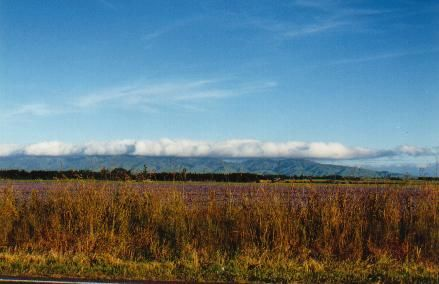 Land of the long white cloud - Kimbolton Road - North Island