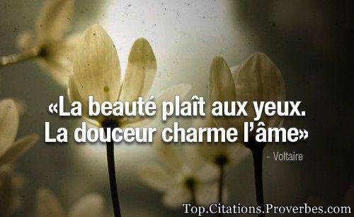 Citation courte : La beauté plaît aux yeux. La douceur charme l'âme – Voltaire