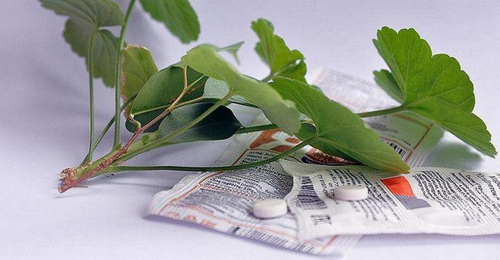 В любой аптеке буквально за копейки продаётся средство, которое превратит ваш сад в мечту!