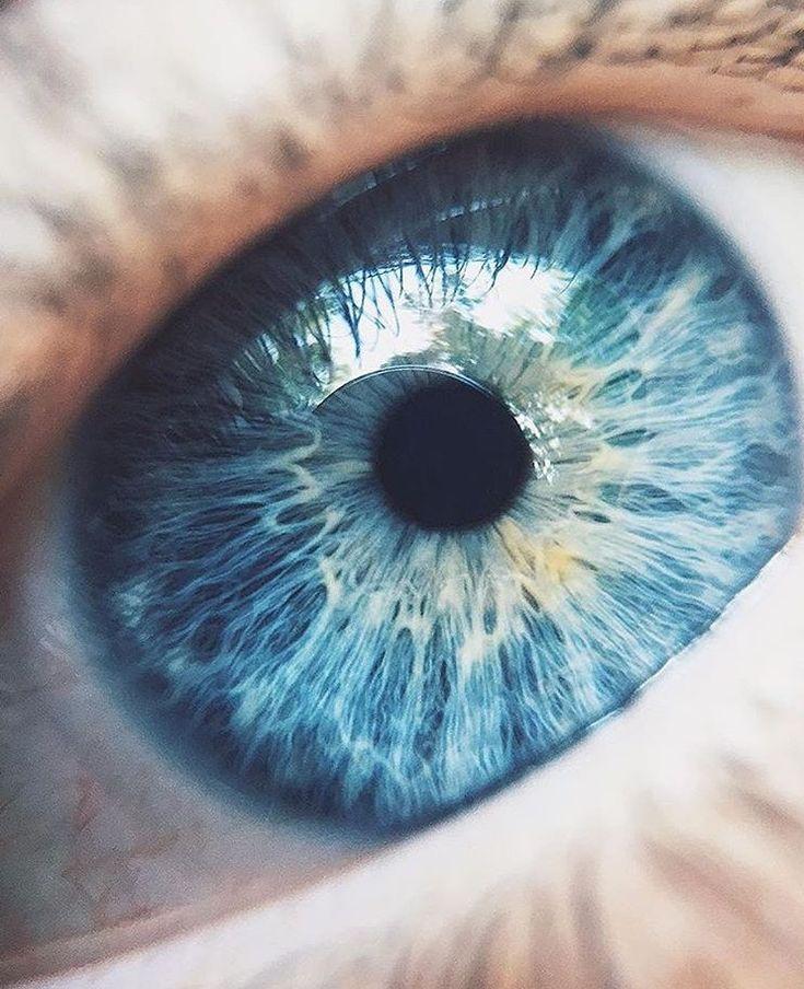 картинки серых с голубым глазами несколько