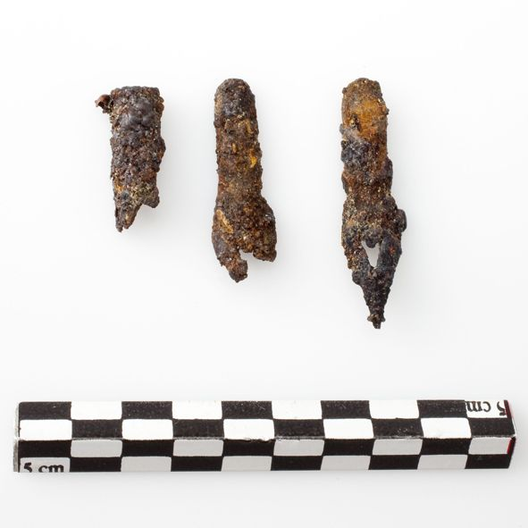 Pointes de plumes à écrire découvertes dans la cruche.  Photo : N. Girault