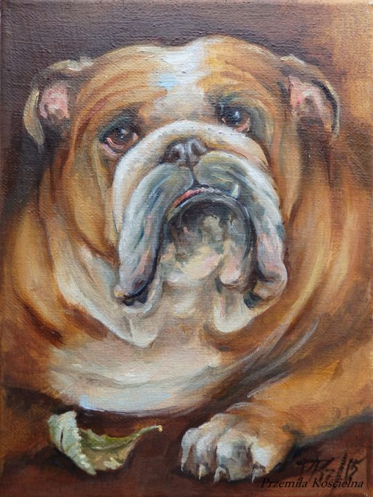 English Bulldog portrait on canvas by Canis Art Studio