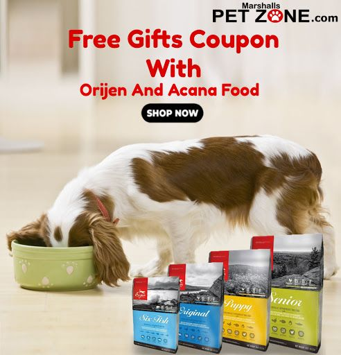 Orijen Acana Dog Food Now Available Here All Dogs Have Sharp