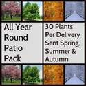 All Year Round Patio Vegetable Garden Packs 30 plants per season one delivery Spring One Summer and One Autumn click below to buy now  @ http://www.vegetableplantsdirect.co.uk/ourshop/prod_2342651-All-Year-Round-Patio-Vegetable-Garden-Packs-30-plants-per-season.html