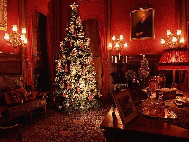 12 Best Newport RI Christmas Images On Pinterest Newport Rhode  - Christmas Trees Ri