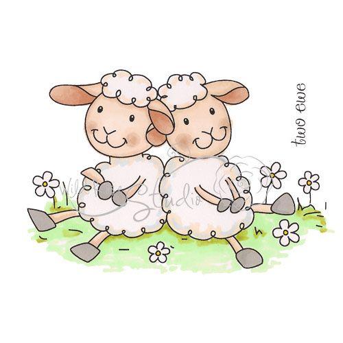 Two Ewe