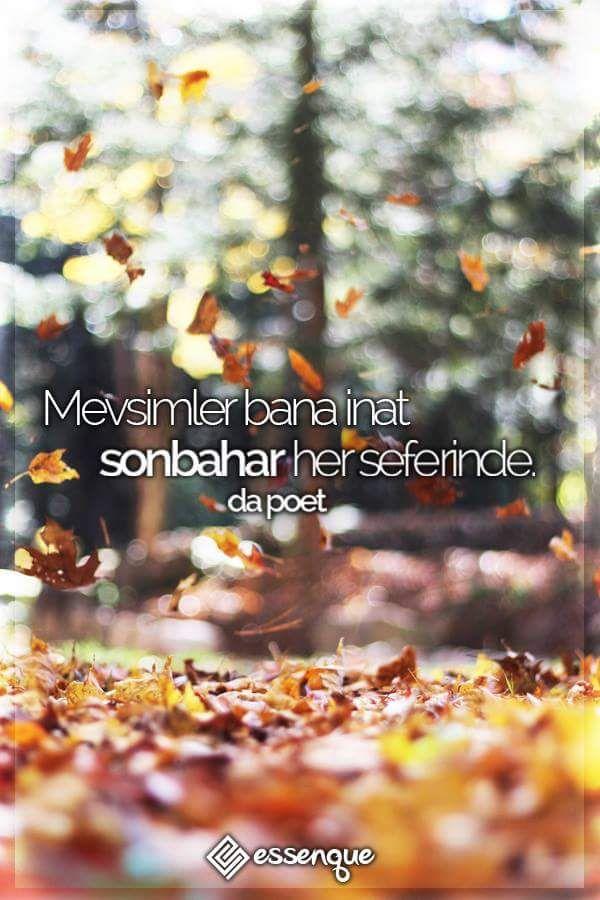 Mevsimler bana inat sonbahar her seferinde.  Da Poet