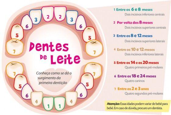 Primeira dentição: as maiores dúvidas