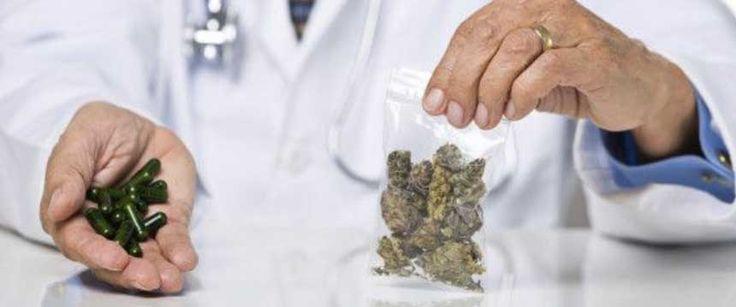 El cannabis es eficaz como tratamiento para el síndrome de Tourette