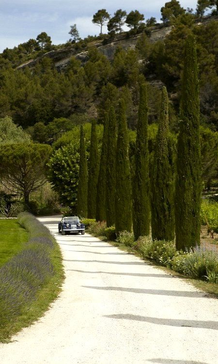 Country road in Luberon, France