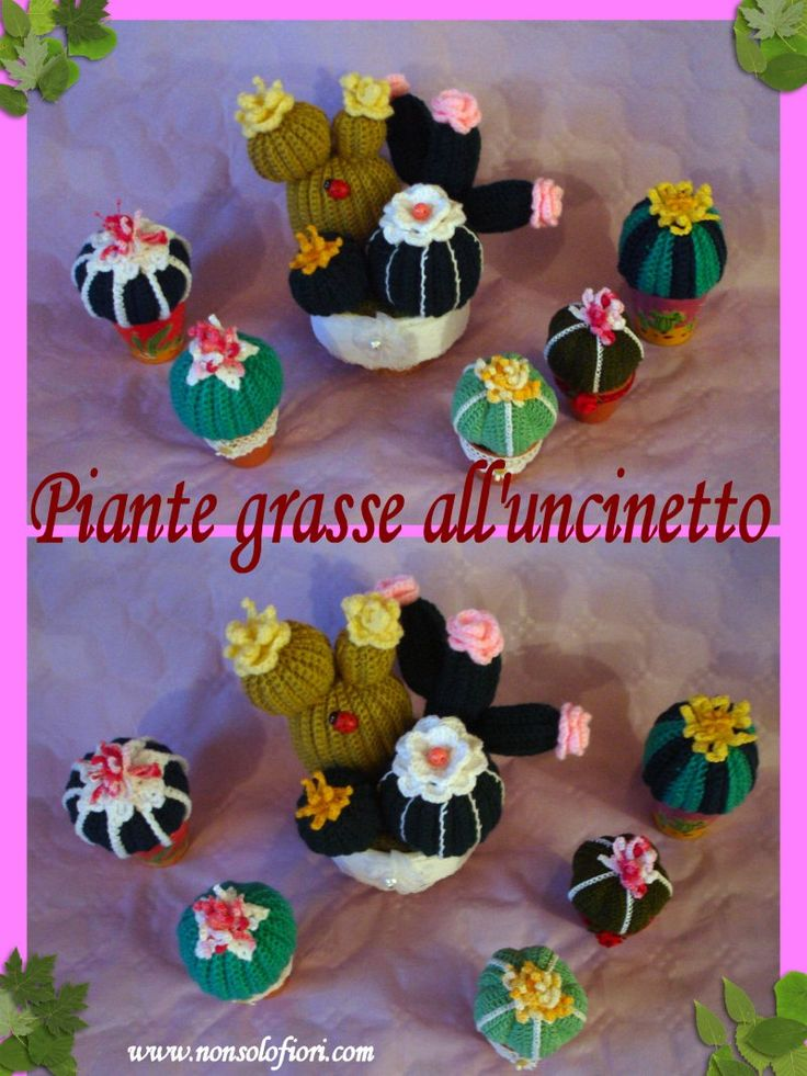 17 best piante grasse all 39 uncinetto images on pinterest for Piante grasse uncinetto