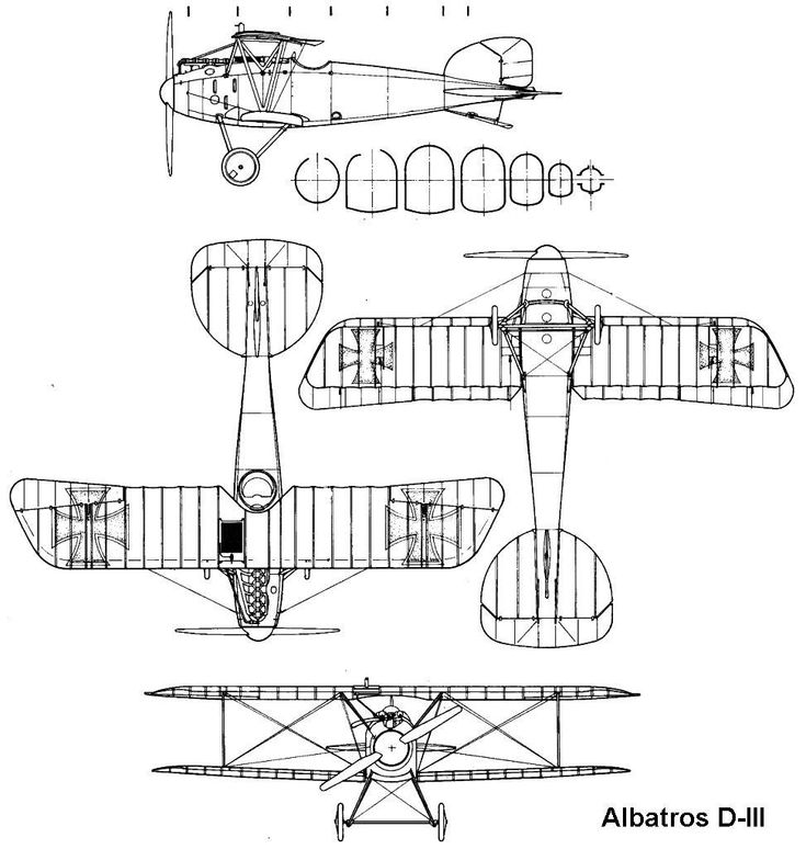 Albatros DIII blueprint Blueprints Vintage airplanes