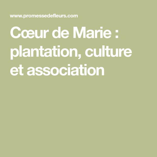 Cœur de Marie : plantation, culture et association