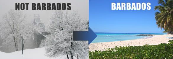 Escape the cold and snow! Enjoy lots of sunshine and cooling breezes in February in Barbados