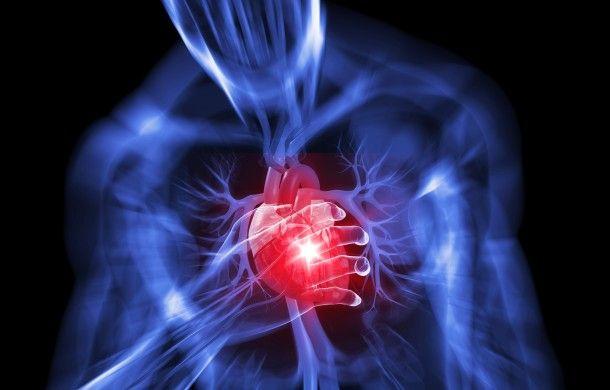 เห็ดหลินจือ รักษาโรคหัวใจ