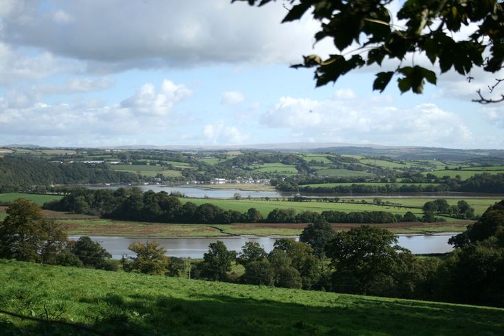 River Tamar Cornwall from Pentillie Castle