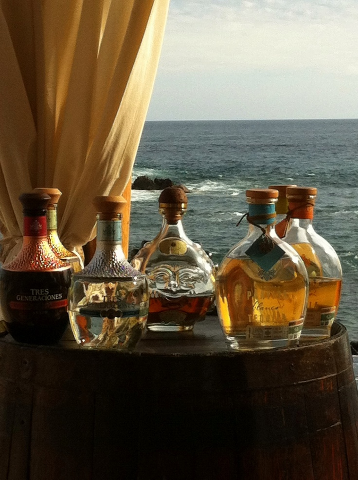 How about a taste of 7 different brands of tequila