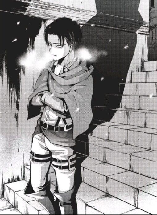 Levi Manga