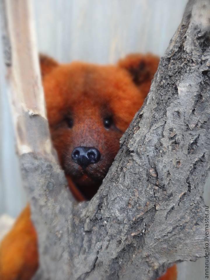 Купить коричневый мед - коричневый, медь, медведь тедди, медвежонок, натюр…