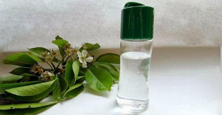 Cómo hacer un desinfectante de manos totalmente natural