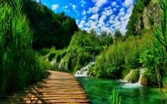 Nature Images Desktop Wallpaper