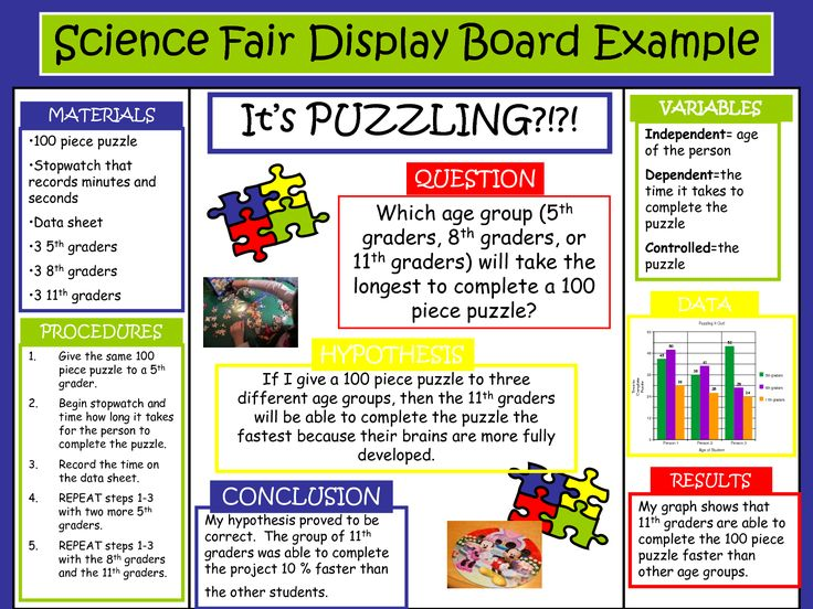 science fair project boards examples | Science Fair Display Board Example